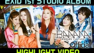 [EXID(이엑스아이디)] 1ST STUDIO ALBUM [STREET] HIGHLIGHT VIDEO