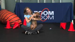 "Puppytickle Training And Behavior ""settle & Relax Your Puppy"""