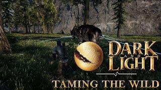 Dark and Light Basics - Taming The Wild