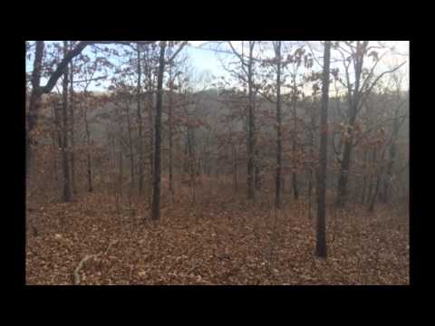 20 ac - Morgan County Missouri Land for Sale Near Lake of the Ozarks at RecLand.net