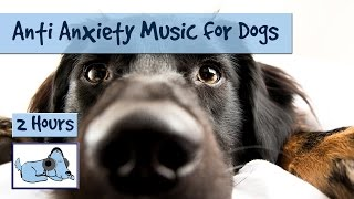 Here's over two hours of anti anxiety music for dogs! We hope you a...