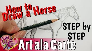 How to DRAW a HORSE Step by Step Real time