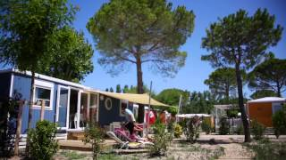 Locations   Camping Yelloh! Village Les Petits Camarguais au Grau du Roi   Gard   Languedoc Roussill