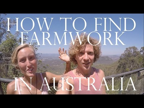 HOW TO FIND A FARM JOB IN AUSTRALIA - BACKPACKER GUIDE - German+English Subtitles