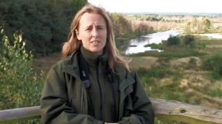 Ochrona przyrody w Rezerwacie Bielawa