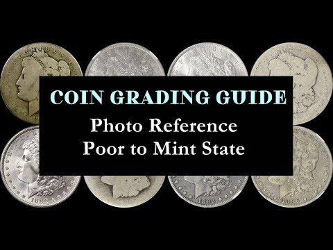 THE ULTIMATE COIN GRADING PHOTO GALLERY - Comprehensive Poor-MS Visual Guide!