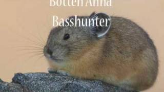Techno Remix (Basshunter's Best)