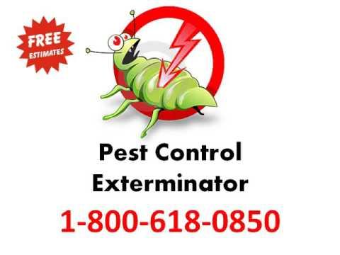 |-pest-control-/-exterminator-service-1-800-618-0850-|