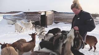 Русский фермер  Анна Чаковская