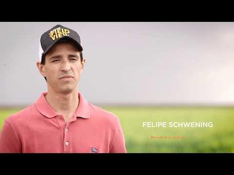Evoluindo com FieldView™: Felipe Schwening