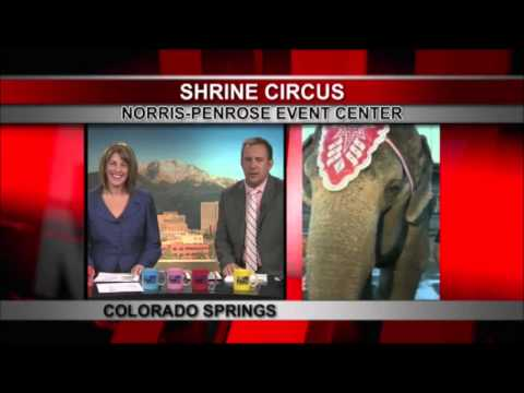 The Circus comes alive on FOX21 Mornings - 5AM Hour