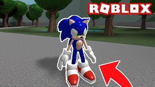 I TURNED SONIC INTO ROBLOX!