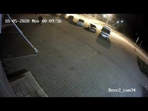 В Ярославле медведь напал на человека (видео)