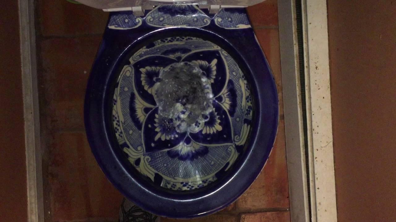 736. Terra Artesana Talavera Toilet. - YouTube