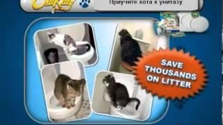 Приучи своего кота ходить в туалет по человечески!