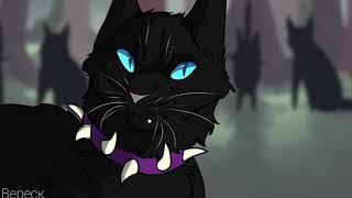~Коты-Воители, Огнезвезд и Бич •Господь гнев •~
