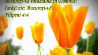 rebeca-ghica-ce-frumos-va-fi-in-ceruri-2014