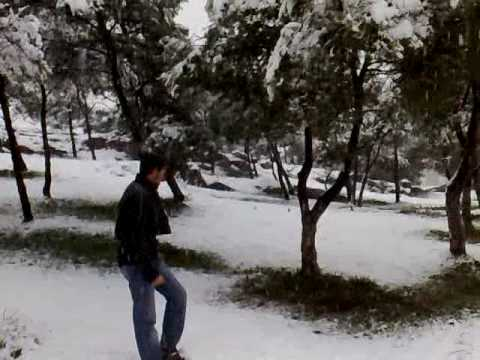 Snow in elmadher batna algeria , البرد يقتل