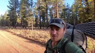 AZT thru hike 2019: Tusayan to Flaggstaff