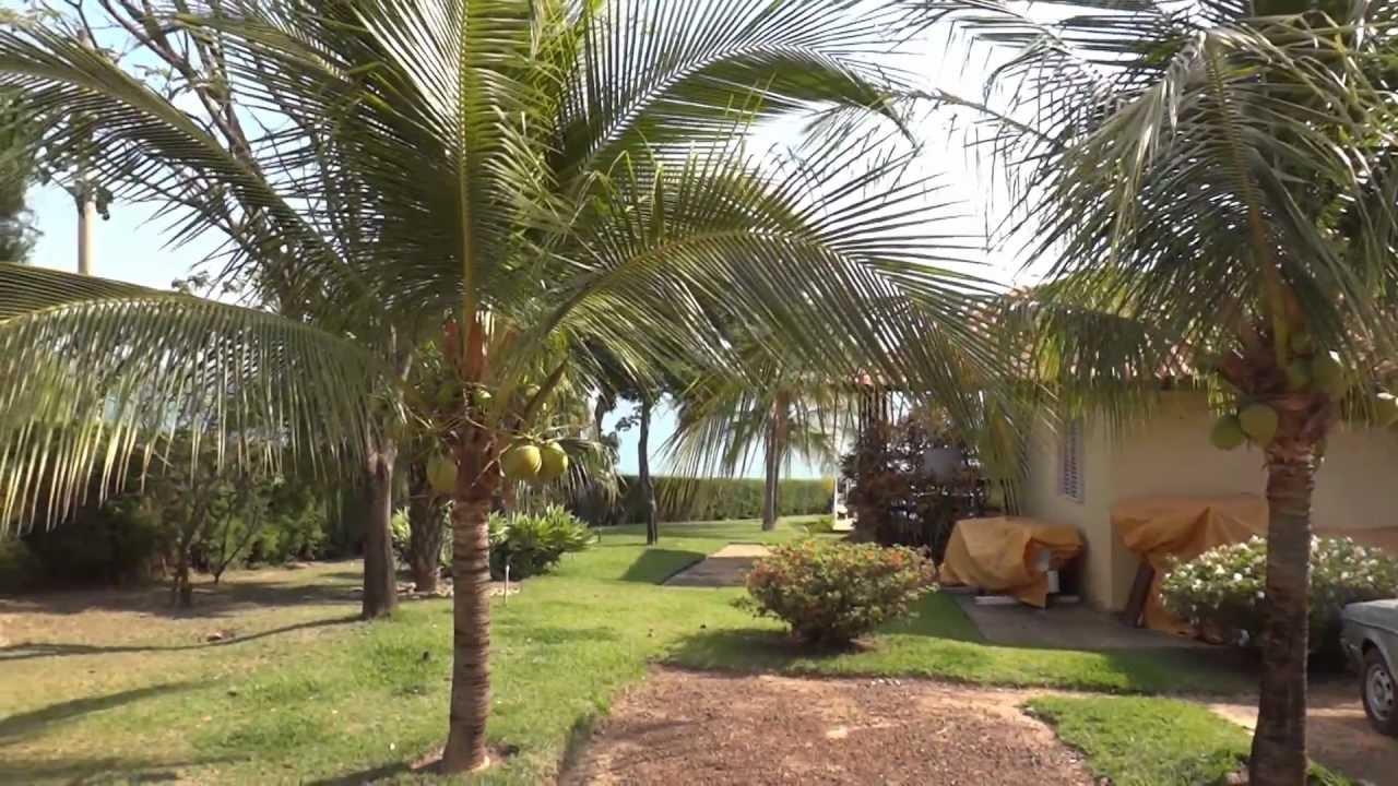 Rancho Alvinego Trs Marias MG  YouTube