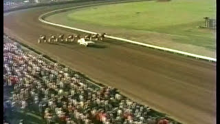 1980 Little Brown Jug - Niatross