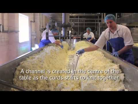 See how real, delicious Somerset Cheddar is made at Cricketer Farm - the home of Cheddar