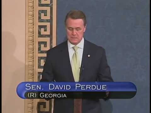 Senator David Perdue Delivers First Senate Speech