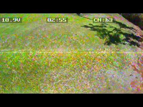 8/20/2017 eachine racer 250 screen recorder Patsy T mink 2