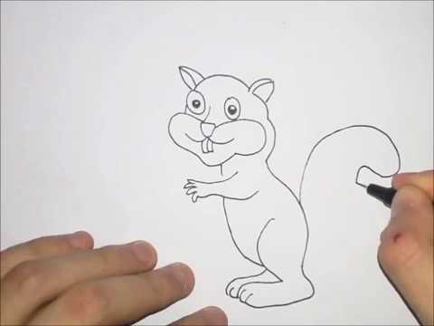 Kako Nacrtati Vevericu Sa žirom Drawing A Squirrel With A Jury