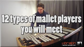 12 types of mallet players you will meet / Vibralph