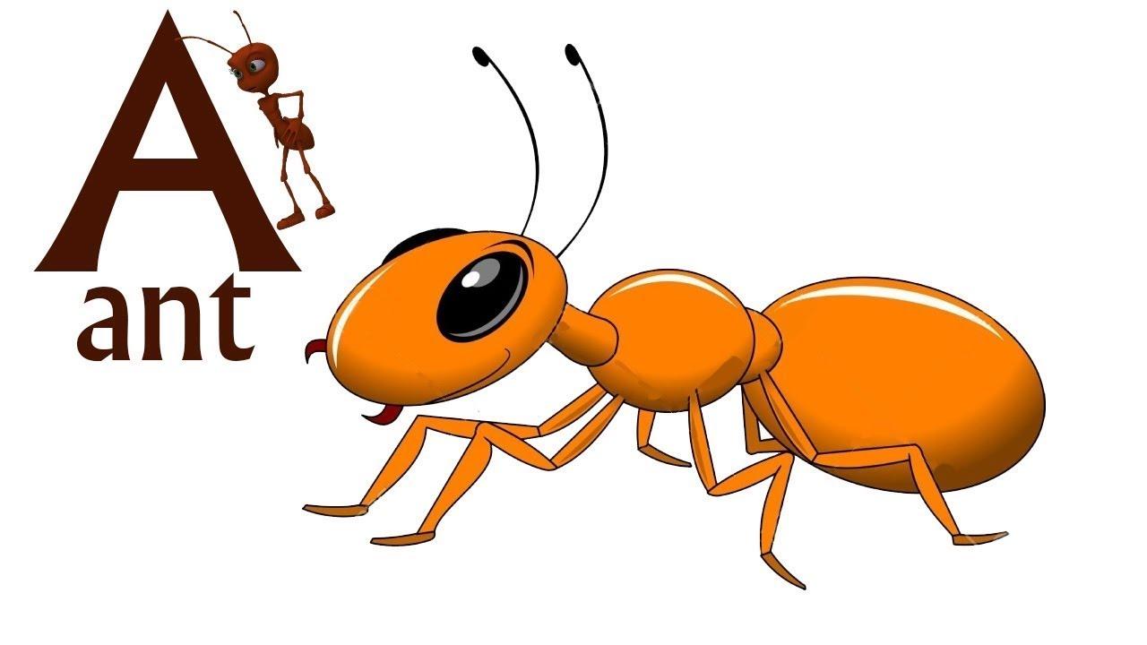 удивило муравей на английском картинка двери фотопечатью рязане