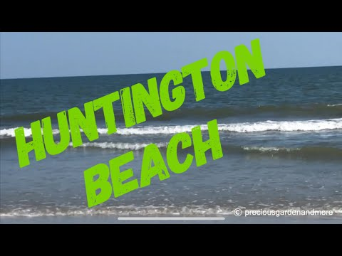 Huntington Beach State Park