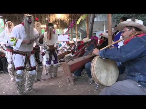 Saludos al Alba y Viernes Santo en Festival Yoreme Sinaloa 2015 Parte 1/2 (22-Enero-2016)
