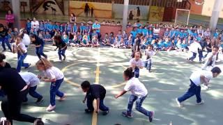 Baixar Apresentação de dança - Mistura de ritmos - Escola Integrada
