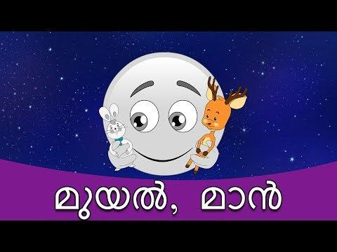 മുയൽ, മാൻ - കഥകള് മലയാളം | കാര്ട്ടൂണ് മലയാളം | Fairy Tales In Malayalam | Malayalam Story