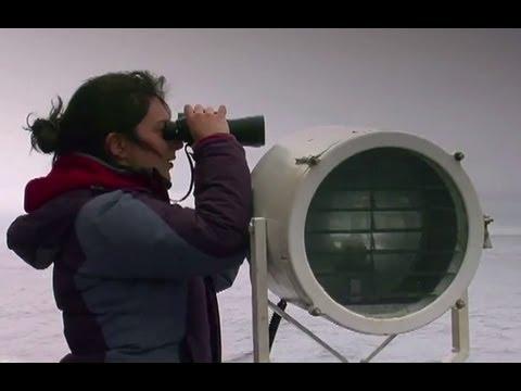 Antarctica Expedition with Etihad