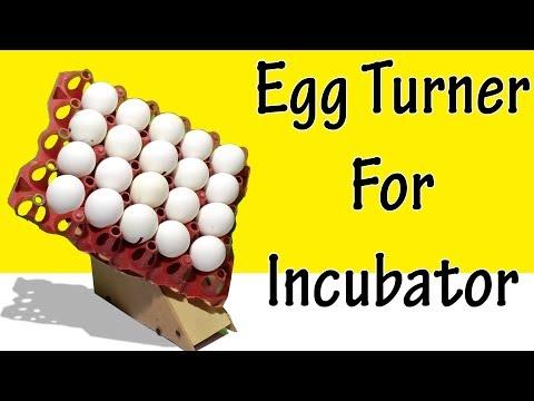How to make egg turner - how to make egg incubator automatic turner - egg turner Mp3