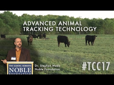 Animal Tracking: Advanced And Emerging Technologies