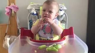 blw baby led weaning introduccin kiwi