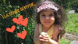 Ela Minik Sarı Civciv Seviyor Hayvan Sevgisi Fun Kids Video