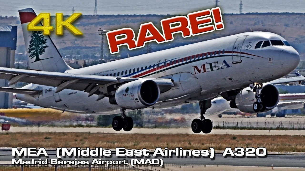 The best Middle East Airlines flight review: MEA #202 A330 ... |Nicest Middle Eastern Airline