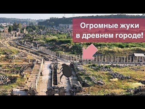 Античный город Олимпос - где находится, стоимость билета, фото