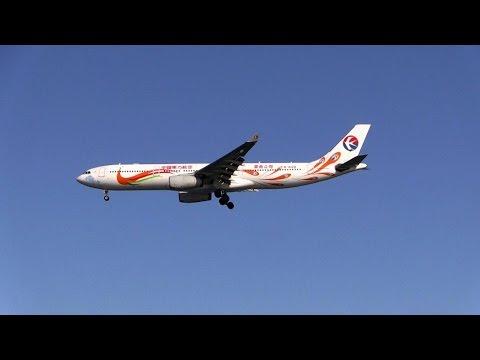 Peacock Jet (B-6128 / A330-343 / CES/MU / 2015-01-23 13:31 & 14:47-14:52 / HND)