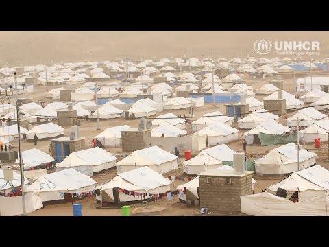 Iraq: Winter help for displaced Iraqis