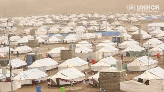 Iraq: Winter help for displaced Iraqis