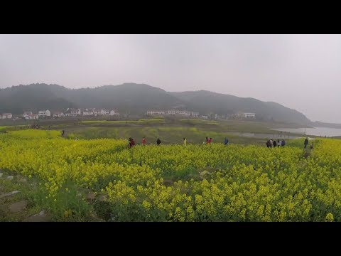 China Hubei Rural Village Trip - 湖北小婺源