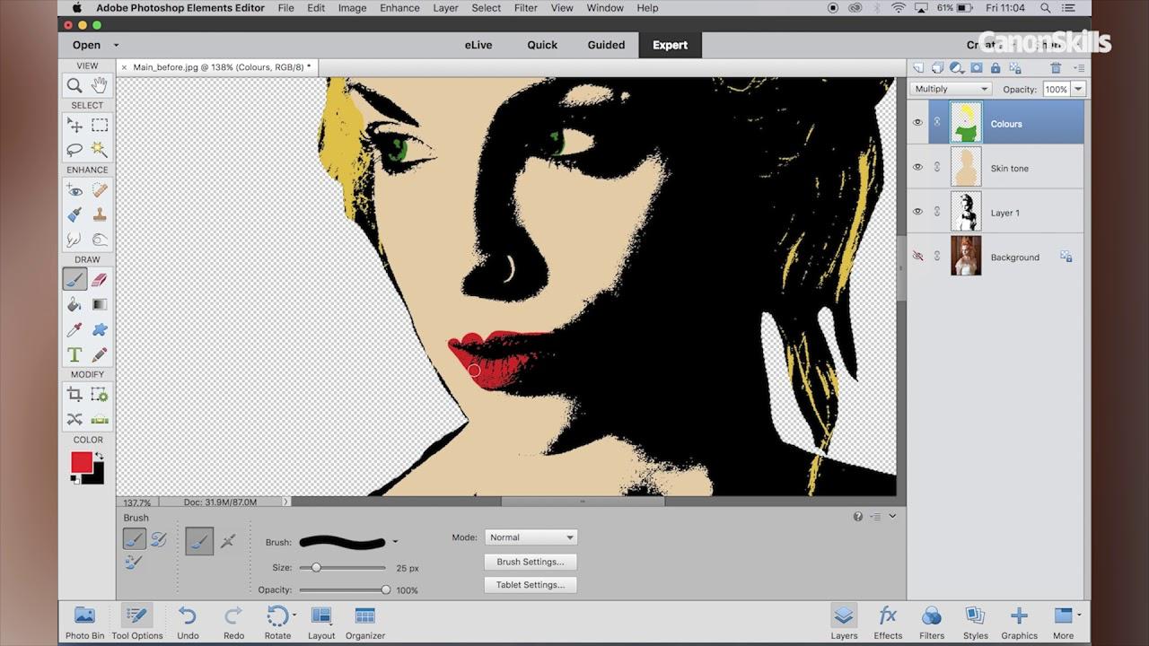 Create a Pop-Art effect in Photoshop Elements