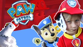 """PAW PATROL """"Mission Chase"""" Search For Chickaletta with Marshall Costume & Doc McStuffins Toys"""