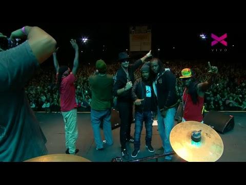 [EN VIVO] Disfrutá con nosotros el Festival Internacional de Reggae de Buenos Aires.