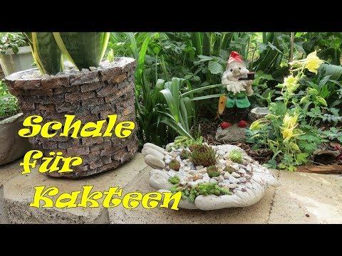 Dekoration für Garten aus Beton selbst machen . Kakteen Pflanzgefäße